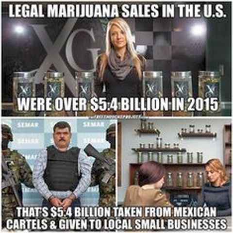 legal pot billions USA Mexico cartels local small business