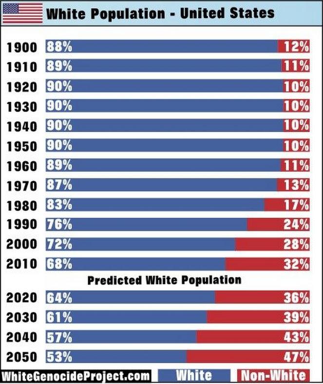 White population USA past present future